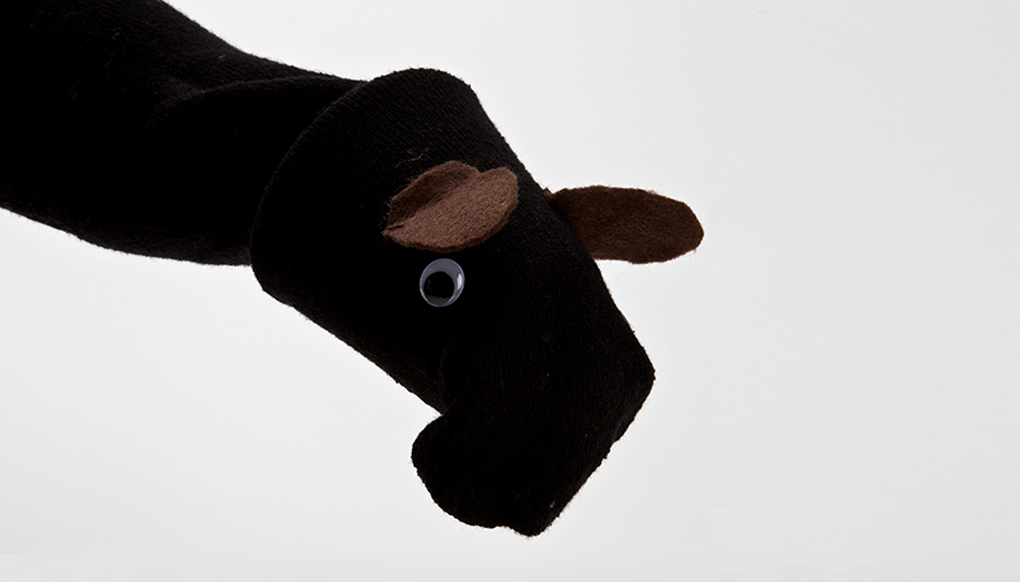 Tapir Sock Puppet Completed Activity