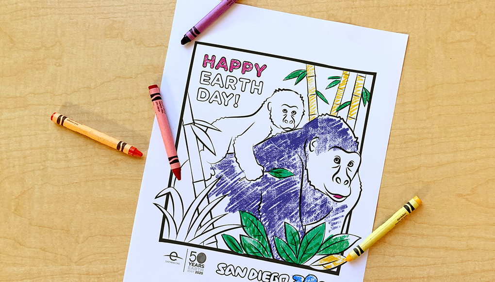 Coloring page featuring a gorilla mom and baby.