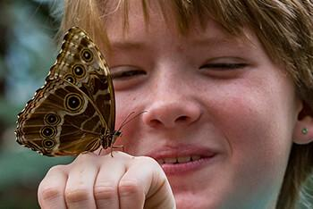 A boy smiles at a butterfly that has landed on his hand